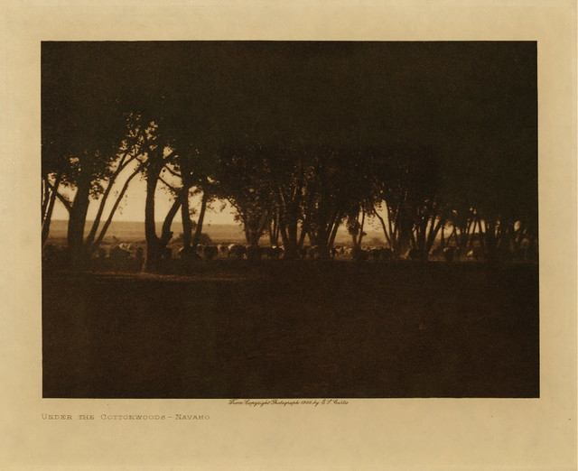 Under the Cottonwoods, Navaho, by Edward S. Curtis