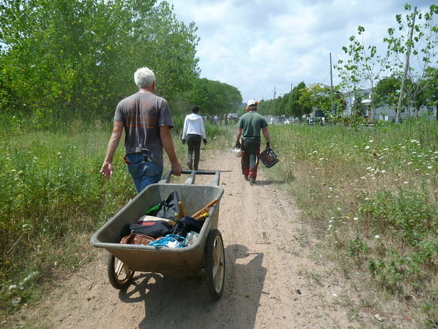 Returning from the wooded harvest site at the end of the collection day. Photo by Elizabeth Peters.