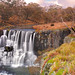 Ebor Falls in Winter