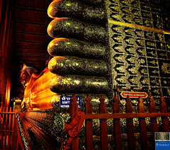 The Lie Down Buddha/ The Reclining Buddha ( Chetuphon Wimonmangkhalaram Temple )