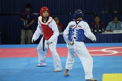 tang soo do(0.0), striking combat sports(1.0), individual sports(1.0), contact sport(1.0), taekwondo(1.0), sports(1.0), combat sport(1.0), martial arts(1.0),