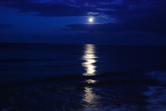 August moon 2