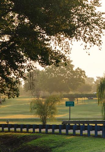 morning mist sunrise canon golden northcarolina lakeside desiree garner stover lakebenson t1i desireestover