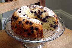 cake, baking, panettone, bread, baked goods, food, gugelhupf, dessert,
