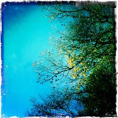Sunny Day, Finally
