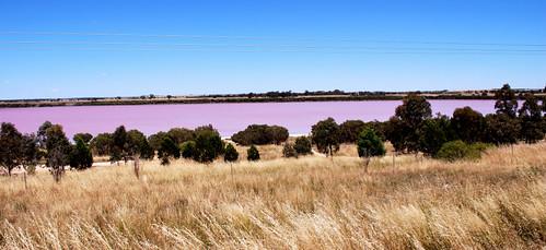 Panorama of Pink Lake near Dimboola, VIC, Australia