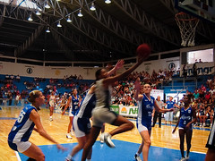 cheering(0.0), amateur wrestling(0.0), greco-roman wrestling(0.0), sports(1.0), basketball moves(1.0), basketball(1.0), slam dunk(1.0),