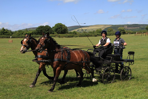 Ballinderry Carriage Driving