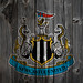 Newcastle United FC Wood iPhone 4 Background by anonymous6237
