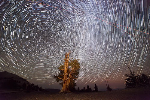 Star Trails and Perseid Meteors