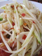 salad(0.0), spaghetti(0.0), cellophane noodles(0.0), coleslaw(0.0), produce(0.0), vermicelli(0.0), chow mein(0.0), vegetable(1.0), bean sprouts(1.0), green papaya salad(1.0), food(1.0), dish(1.0), carbonara(1.0), pad thai(1.0), cuisine(1.0),