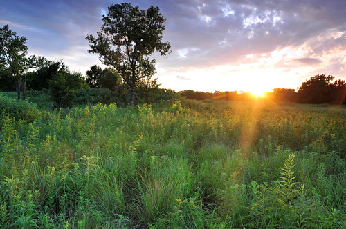 park sunset summer green creek kansas prairie wichita tallgrass chisholm chisholmcreekpark