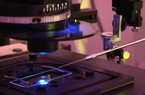 Laser Confocal Flouresence Microscope
