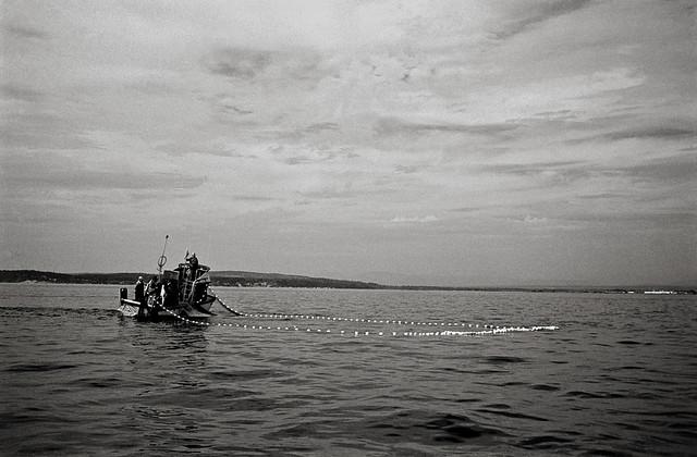 Net fishing puget sound washington state flickr for Fishing puget sound