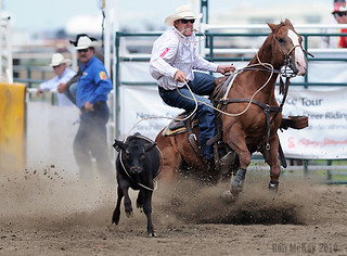 Strathmore Alberta Rodeo Action