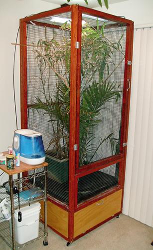 Custom chameleon cage   Flickr - Photo Sharing!