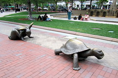 Boston sculpture: the tortoise and the hare