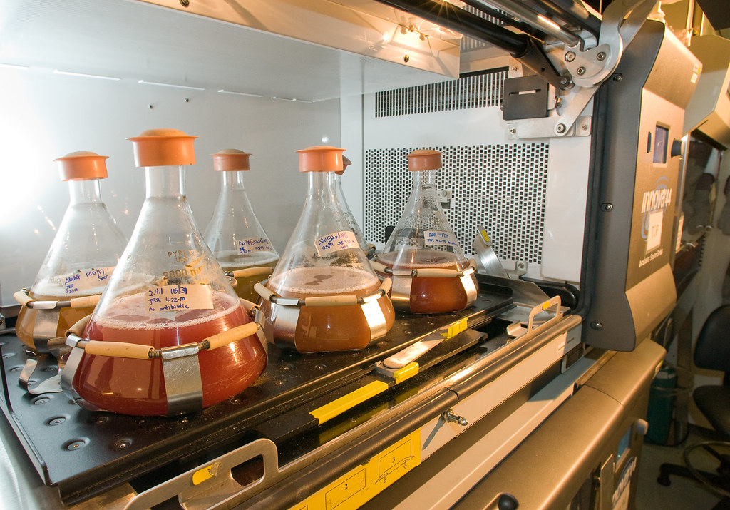 Biofuel - Author: Argonne National Laboratory / photo on flickr