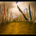 Chele La Pass [EXPLORED] by Jayati2009
