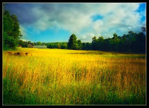 landscape vermont august fields hay