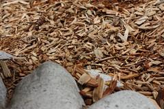wood, close-up, mulch,