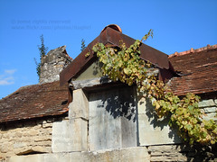 House in Saint Marc sur Seine - Photo of Fontaines-en-Duesmois