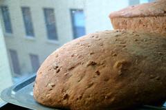 rye(0.0), bread(0.0), whole grain(0.0), ciabatta(0.0), produce(0.0), brown bread(0.0), baking(1.0), rye bread(1.0), baked goods(1.0), food(1.0), soda bread(1.0), sourdough(1.0),