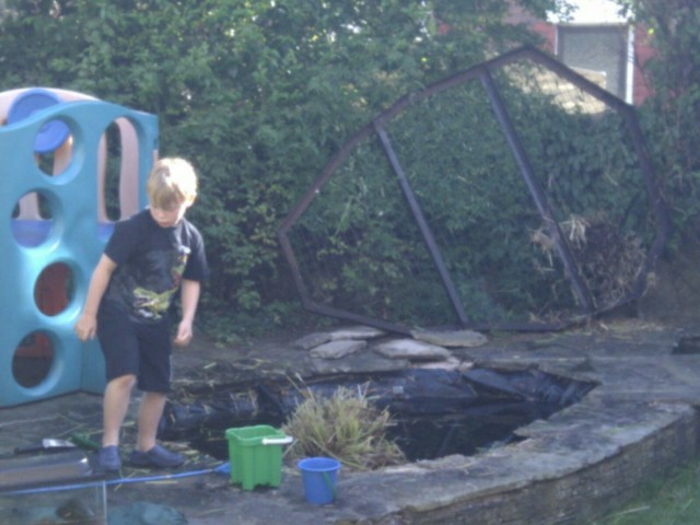 Pond clearance flickr photo sharing for Fish pond preparation