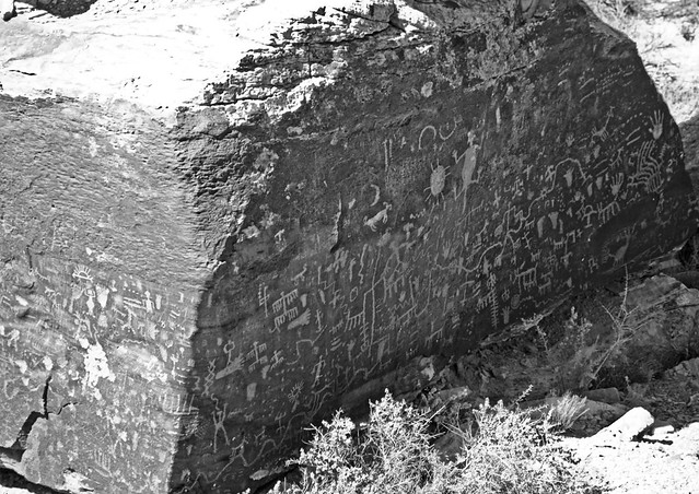 Petroglyphs Galore
