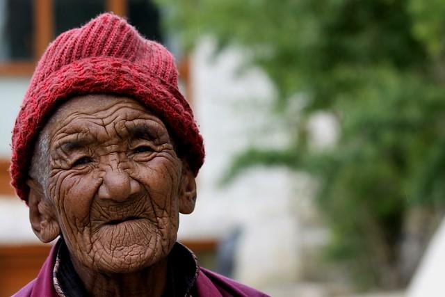 ladakh buddhist nun