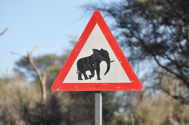 Signs portents botswana flickr photo sharing for Sign and portents