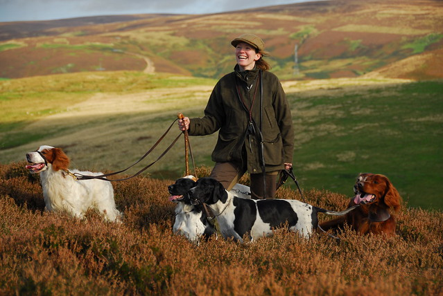 Grouse shooting in Cumbria   Flickr - Photo Sharing!