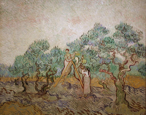 The Olive Orchard by Vincent van Gogh