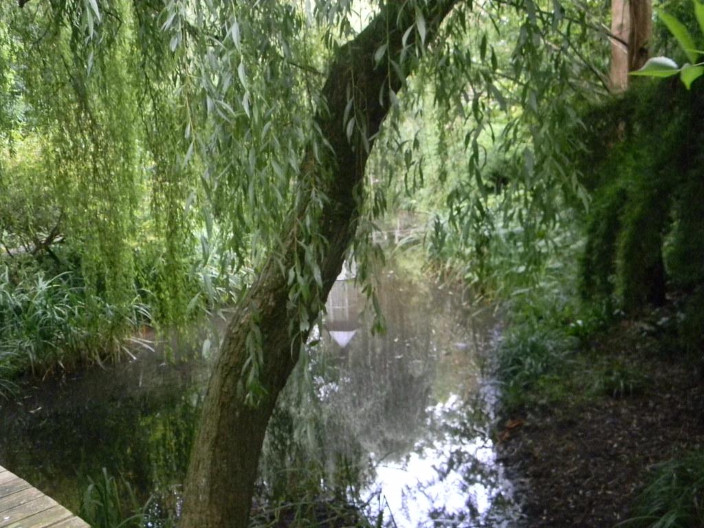 Lyde Gardens Saunderton Circular via Bledow