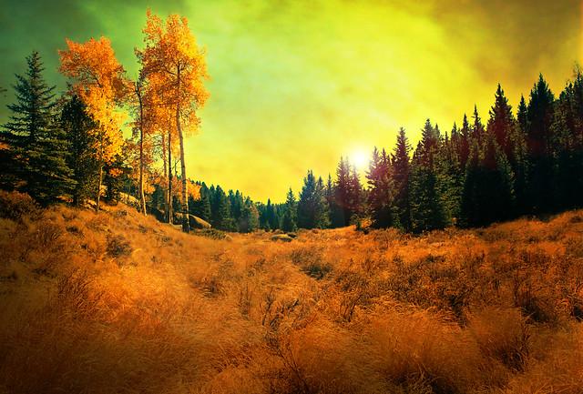 mountain meadow autumn above - photo #36