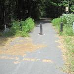 Crow's Nest Road path