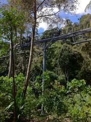 Mount Tamborine