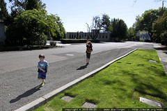 brothers walking to the library