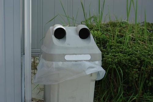 Frog face, Japan