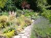 Berkeley Botanical Gardens