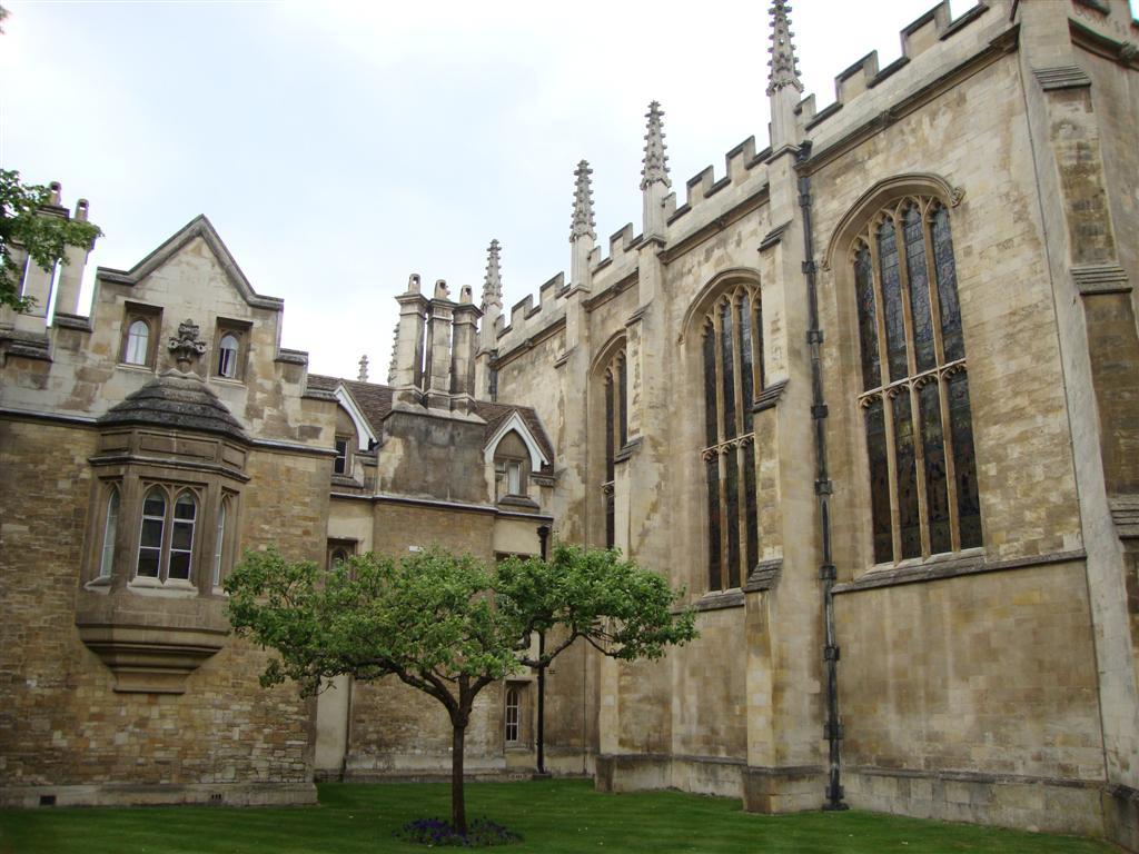 """Una de las más desconocidas pero fascinantes """"lugares"""" que ver en Cambridge es el que se dice que es el descendiente directo del famoso árbol sobre el que Issac Newton estaba sentado cuando le cayó una manzana en la cabeza. Aquí en el Trinity College y en la facultad de matemáticas es donde está el susodicho descendiente. Increíble ¿verdad? cambridge - 5067606720 1085a3d378 o - Cambridge (England) y sus rincones para turistas"""
