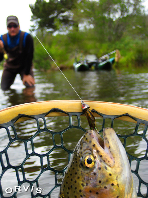 Flickr orvis fly fishing photo contest for Orvis fly fishing blog