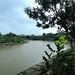 Bengawan Solo yang setiap tahun mengalami banjir. : The Bengawan River floods every year. Photo by Ardian