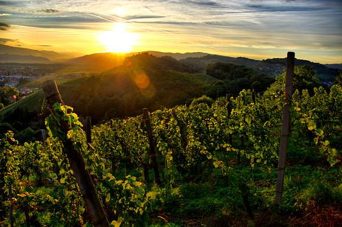 autumn light sunset sky sun sunshine yellow clouds evening vineyard warm afternoon wine hills grapes late behind setting hdr andthe pyramidhill calvaryhill kozjak jpingjk viewedfrom