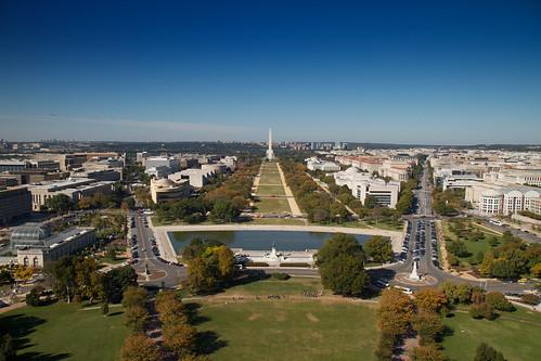 A Washington DC Landscape