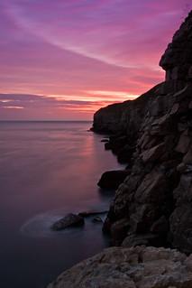 Jurassic Gargoyle, Dorset