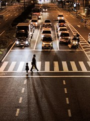 Pedestrian crossing with shadow 横断歩道と影