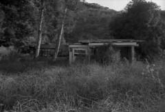 Abandoned Petting Zoo