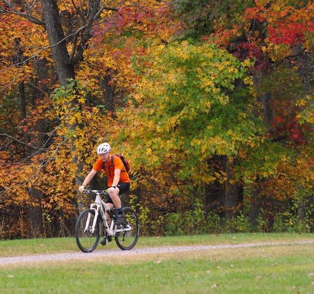 Fall Biking