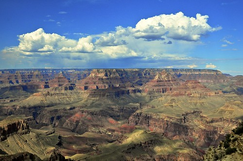 Cool Nature Desert images